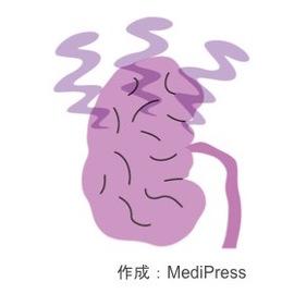 末期腎不全と腎代替療法